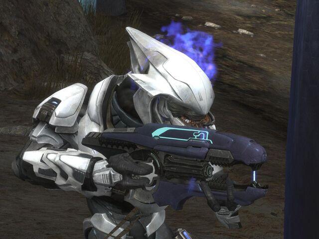File:Elite Hologram Bug with Bungie Flame.jpg
