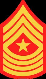 355px-USMC-E9-SGM