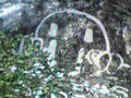 Thumbnail for version as of 19:44, November 11, 2007