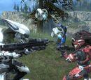 Armor Permutation Glitch