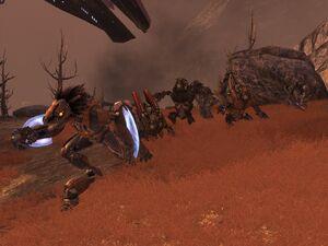 Battle of Terrador