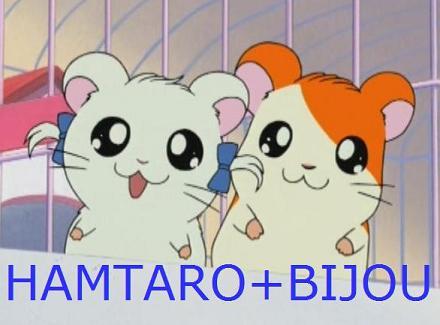hamtaro laura voice actor atonehmp3