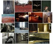 Patti Podesta Website 33