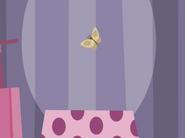Butterflyormoth