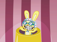 Rabbitcannonball