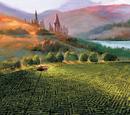 Triwizard Maze