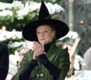 Minerva McGonagall's dress robes