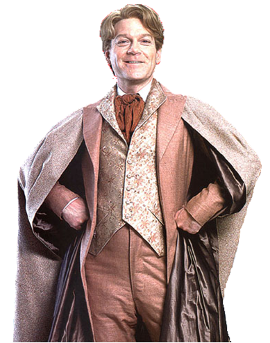 Image result for gilderoy lockhart