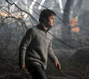 Deathly hallows daniel radcliffe photo