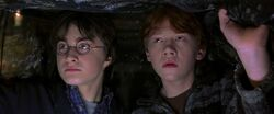 Harry Potter and the Chamber of Secrets 1245