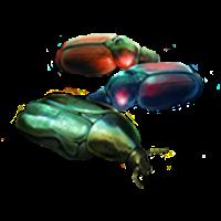 File:Scarab-beetle.png