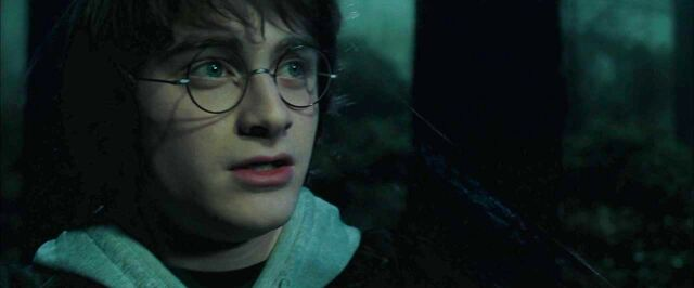 File:Harry Potter and the Goblet of Fire1.jpg