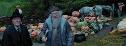 Harry & Hermione free Buckbeak