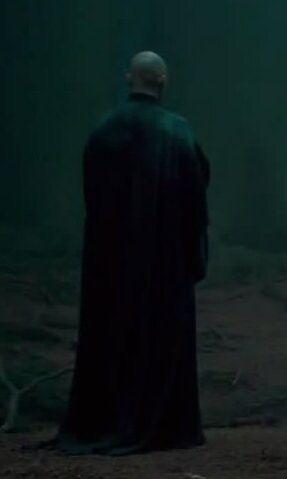 File:Voldemortforest.jpg