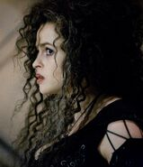 Bellatrix halfbloodprincehq4