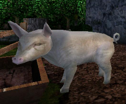 File:Pig.png