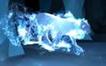 Lioness Patronus.png
