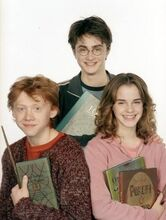 The-Golden-Trio-harry-potter-24726750-302-400
