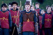Ron in Quidditch.jpg