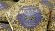 Chocolate Frog1.jpg