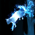 Calico Cat Patronus.png
