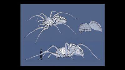 File:Spidersketch.jpg