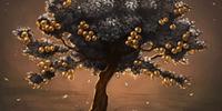 Silver leafed tree