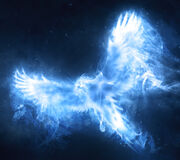 Dumbledores phoenix patronus.jpg