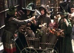 Florist's stall