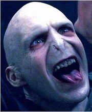 Voldemortprofile