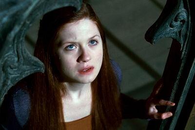 Ginny-jpg