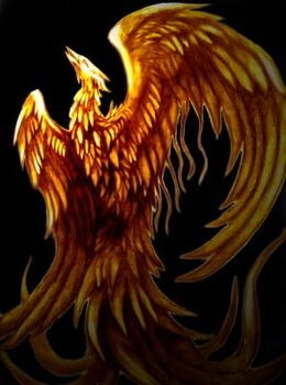 Phoenix bird (1)