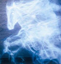 Ginny's horse Patronus