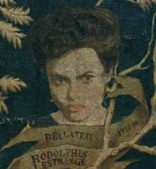 File:Bellatrix Black Family Tree.jpg