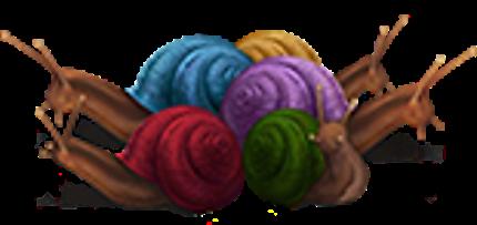 Streeler-shells-lrg