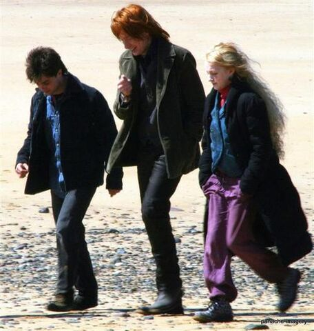 File:Bill walking with Harry and Luna at Shell Cottage.jpg