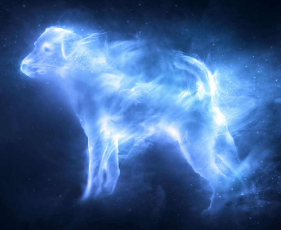 File:Ron's dog Patronus.jpg