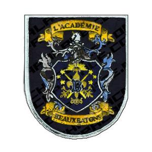 File:The Marauders Beauxbatons Hidden Flag.jpg