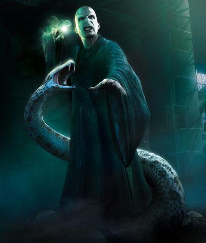 File:Voldemort-Nagini.jpg