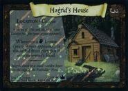 HagridsHouseFoil-TCG