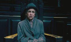 Mrs Figg Trial 1.jpg