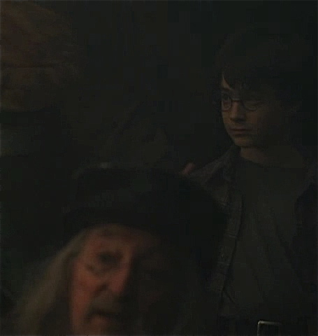 File:Leaky Cauldron Wizard.JPG