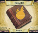Quidditch (Trading Card)