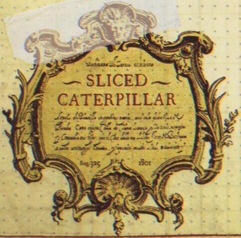 File:SlicedCaterpillar.jpg