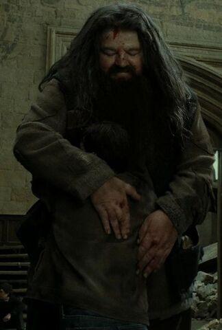 File:Hagrid hugs Harry.jpg