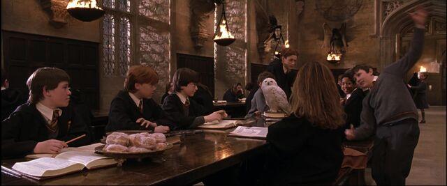 File:Neville got a Leg-Locker Curse (1991).JPG