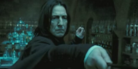 Harry Potter and Severus Snape's private lessons