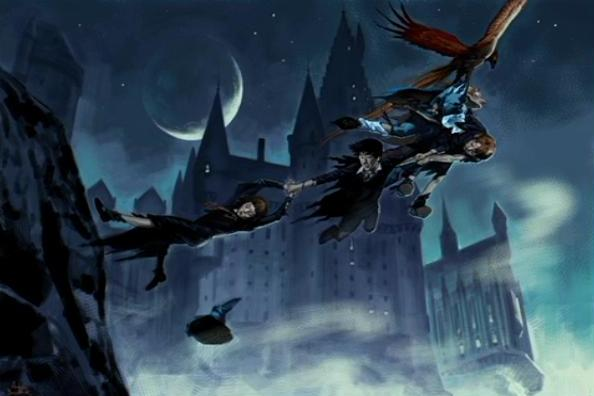 File:Escape from the Chamber (Concept Artwork for the HP2 movie 01).JPG