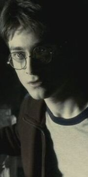 Harryinthecave