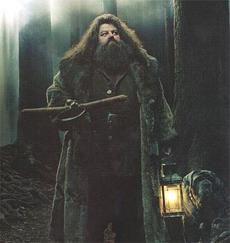 Hagrid with Fang